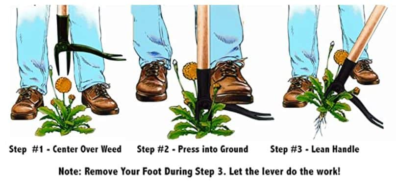 How to pull crabgrass with a puller