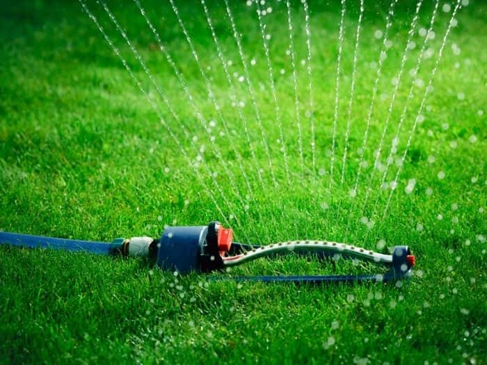 Bermuda grass water requirements and schedule