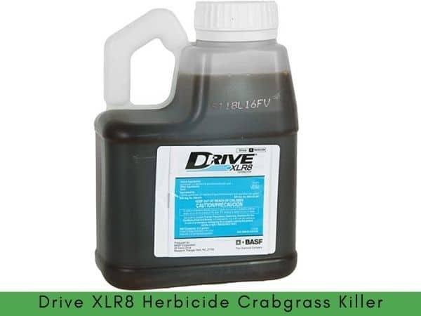 Best crabgrass killer that won't kill grass