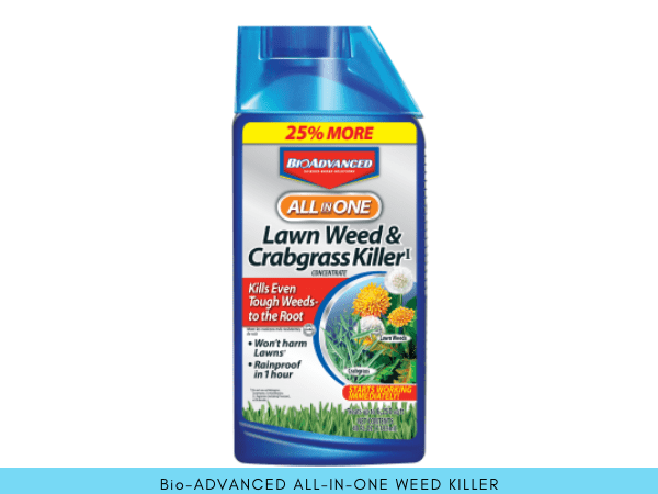 BioAdvanced All in One Lawn Weed and Crabgrass Killer herbicide